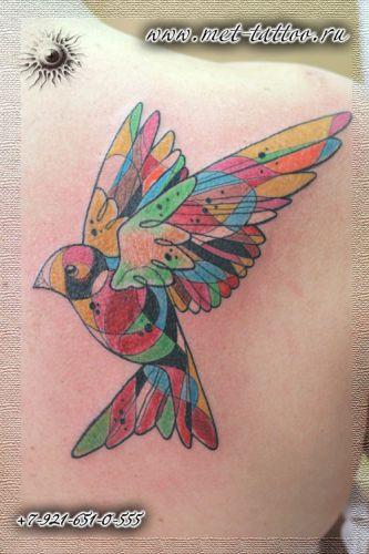 Женская татуировка. Цветная тату на лопатке. Арт-птичка.