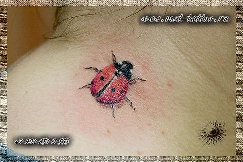 Фото татуировки на шее. Тату божья коровка. Женская цветная татуировка на шее.