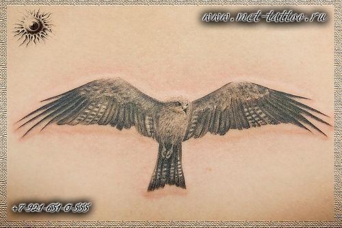 Фото реалистичной тату. Татуировка коршун на пояснице.